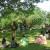 Sagar upvan garden at Colaba