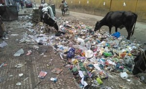 Filth in India