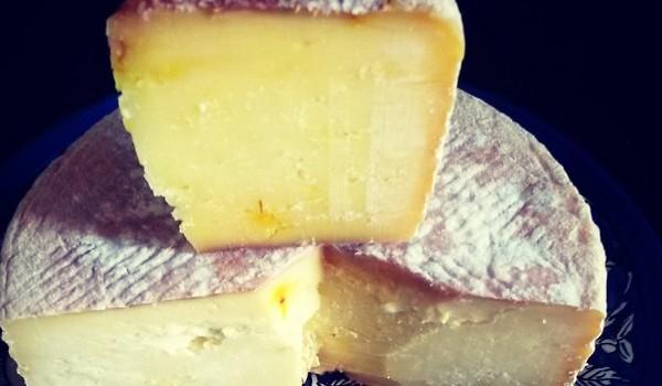 Netania cheese by Mausam Jotwani