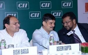 CII Photo 1