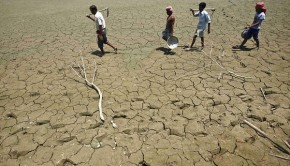 Labourers walk through a parched land of a dried lake on the outskirts of Agartala