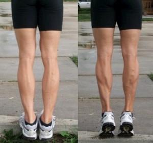 Double leg calf raise