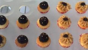 Mini Cupcakes_Crumbilicious